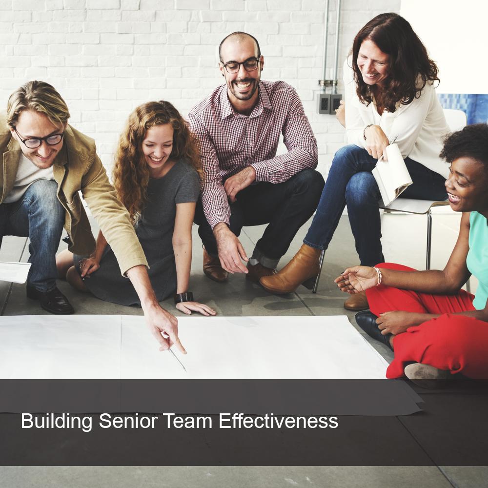 Business senior team leaders enjoying team building exercise
