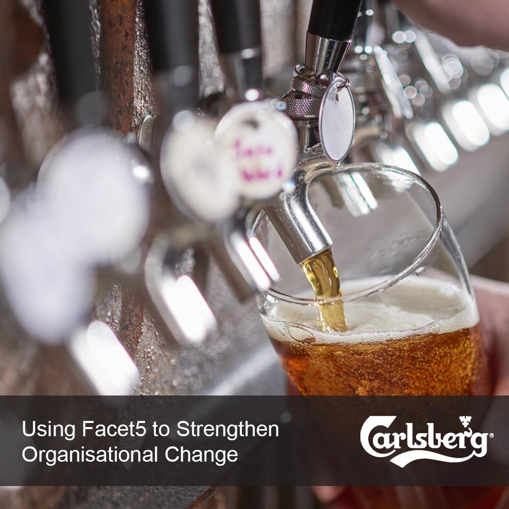 Poring a Carlsberg beer